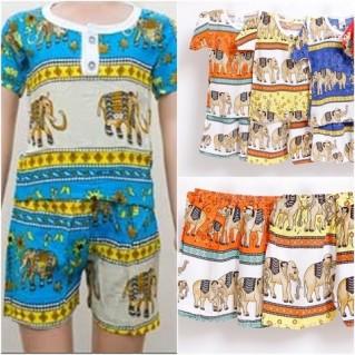 Combo 2 bộ đồ lanh hình con voi cho bé trai