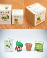 Combo 02 cây trồng mini