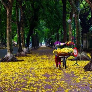 Nhóm Mua - Du lich van hoa lich su Thang Long - Ha Noi bang oto dien