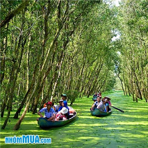 Tour Đảo Bà Lụa - Châu Đốc -Tịnh Biên - Rừng Tràm Trà Sư 2N2Đ