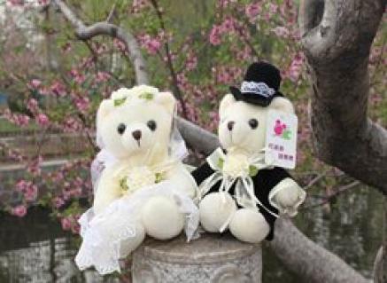Gấu cặp cô dâu chú:8724