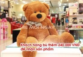 Gấu bông 1 mét