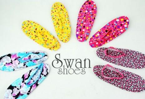 Combo 02 đôi giày vải Swan