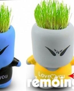 Comb 2 cỏ tóc ( 1 nam 1 nữ)