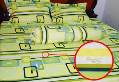 Bộ drap cotton Thắng Lợi