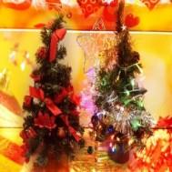 Chào đón giáng sinh về, Cây thông nhỏ giá chỉ 75.000 VNĐ bao gồm 5 trái châu , một bộ đèn và một sợi dây kim tuyến, chỉ có tại Rẻ Từng Giây.