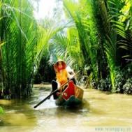 Tour du lịch miền Tây Tiền Giang – Bến Tre giá chỉ 280.000 vnđ - Thư giãn tuyệt vời trong chuyến khám phá miệt vườn sông nước