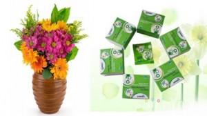 Dinh dưỡng cho hoa tươi lâu hiệu Long Life - Combo 2 hộp, mỗi hộp 10 gói - Giải pháp tiết kiệm cho những người yêu hoa. Sản phẩm trị giá 140.000 còn 55.000 ưu đãi 48%