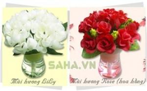Saha - Binh hoa vai toa huong