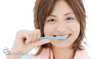 Combo 12 bàn chải đánh răng hiệu KAGA giá chỉ có 68.000đ, đầu bàn chải nhỏ cho phép loại bỏ cao răng những nơi khó đánh nhất.