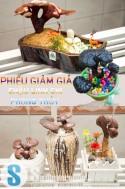 Siêu Mua Chung - PHIEU GIAM GIA CHAU LINH CHI DE BAN PHONG THUY